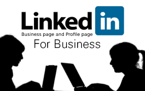 I Will Grow Your Linkedin Account To 300 Plus USA Real Follower Non-Drop