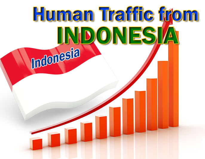 2000 indonesia targeted traffic to your website
