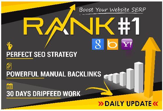 100 seo backlinks manually website on google