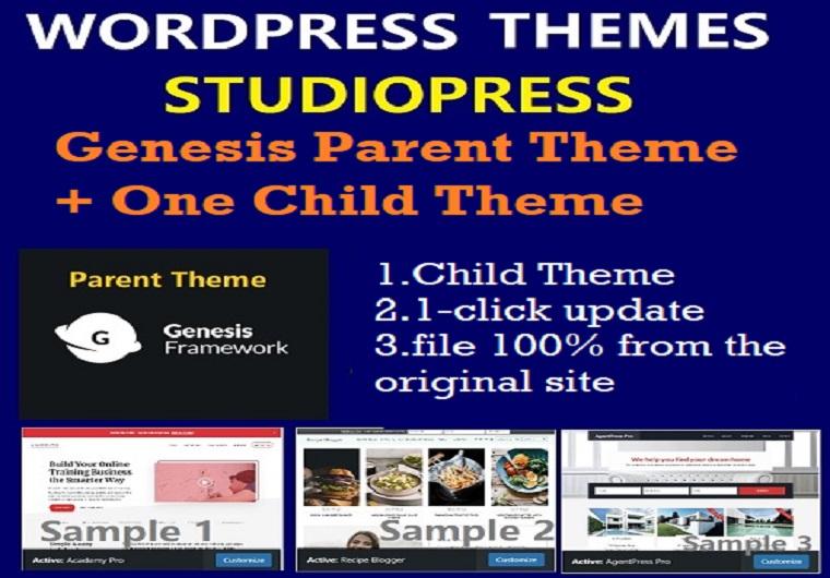 I Will Send One StudioPress WordPress Themes