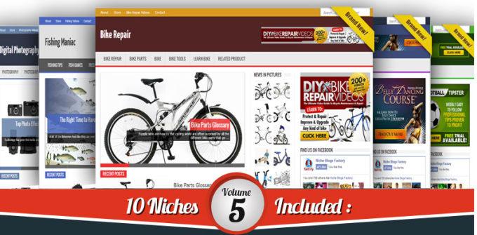 I will provide 18 blogs niche wordpress website clickbank amazon adsense