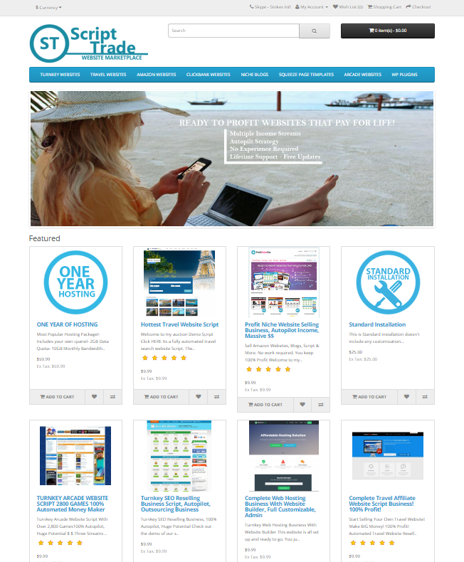 I Will Give You Turnkey Websites Selling Business Script Full Autopilot