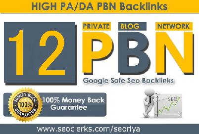 I will Create 12 High Quality PA/DA TF/CF Homepage PBN Post