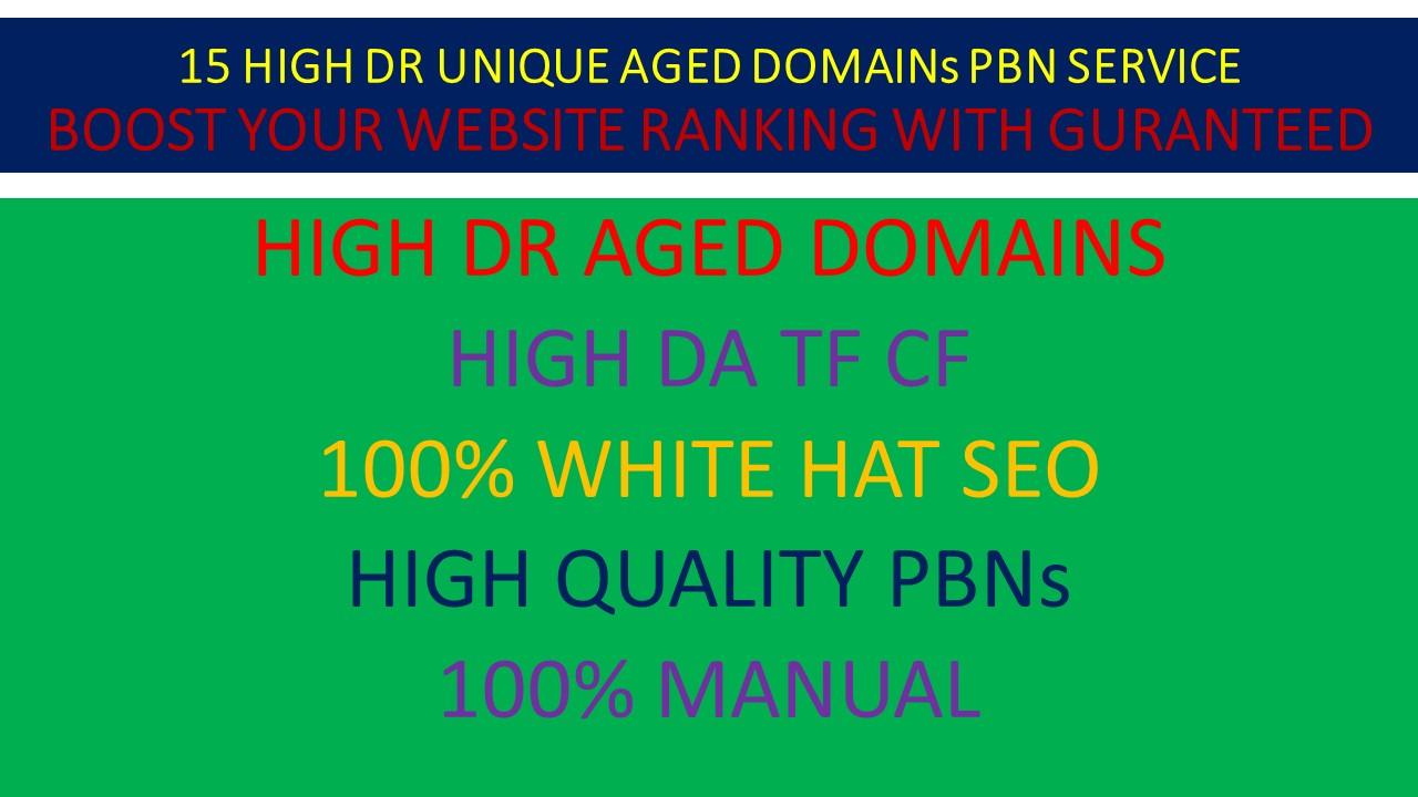 15 High DR Aged Domain PBN With High DA TF CF Contextual Backlinks