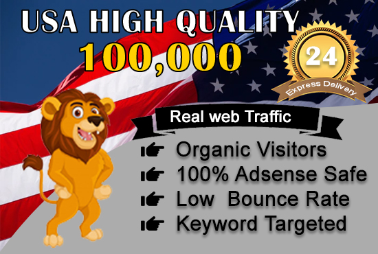 send 100,000 adsense safe USA target website, traffic, daily visitors