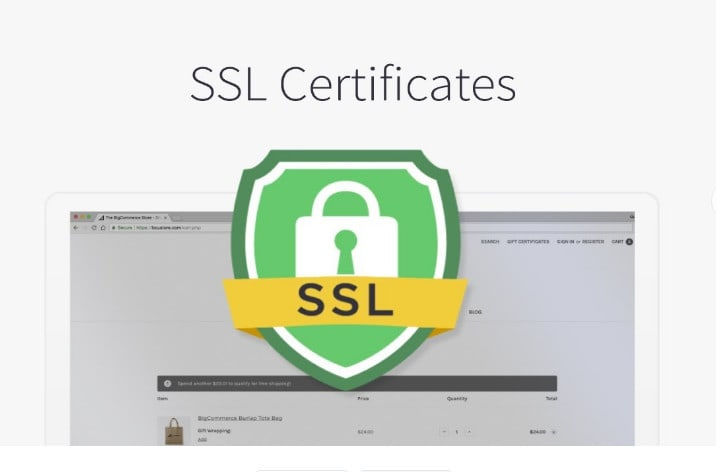 I will install SSL on your site worpress bitnami apache nginx