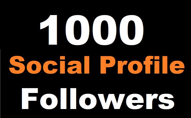 1000+ Social Profile Followers High Quality