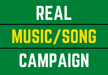 Complete Music Campaign,  Real promotion with actual and organic advertisements