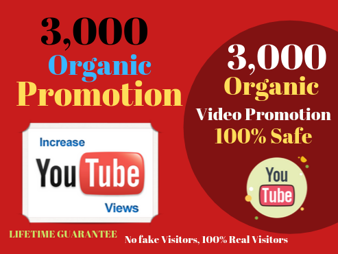 Do SEO for improving video ranking And YouTube Video Promotion