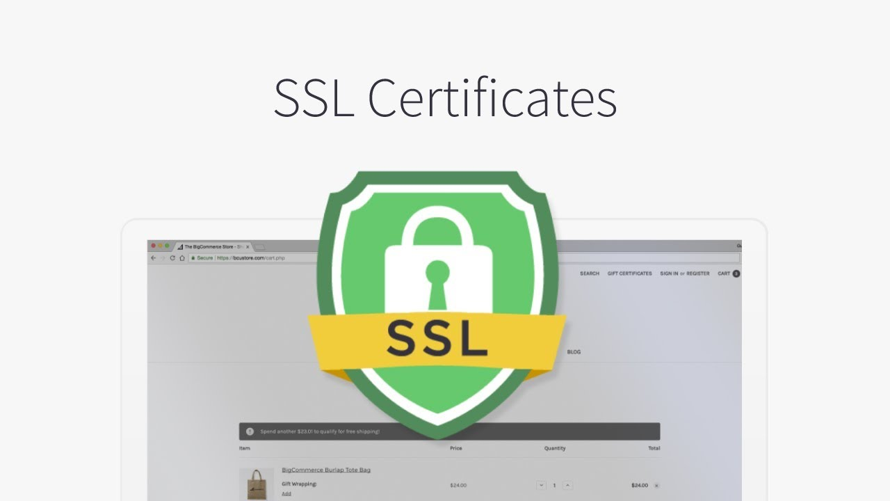 I will install SSL certificate on your website
