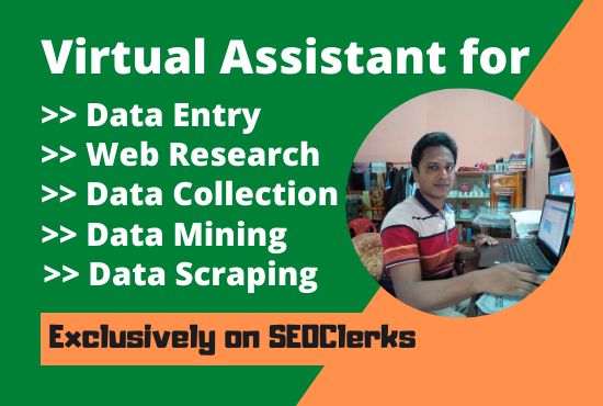 I will be your Virtual Assistant for Data Entry Related any Work 3 Hours only