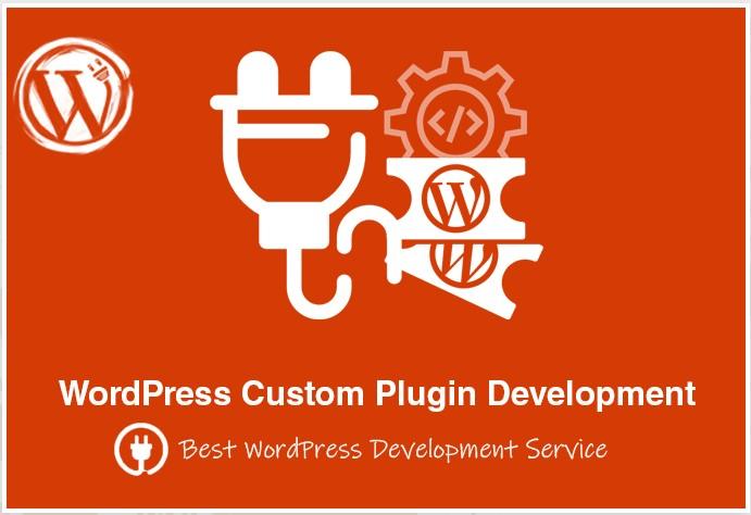 I will design and build a custom wordpress website