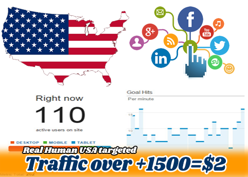 High Quality Traffic Website/Blog + 1500 just 2