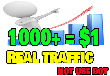 1000+Real Traffic to your website just 1 dollar