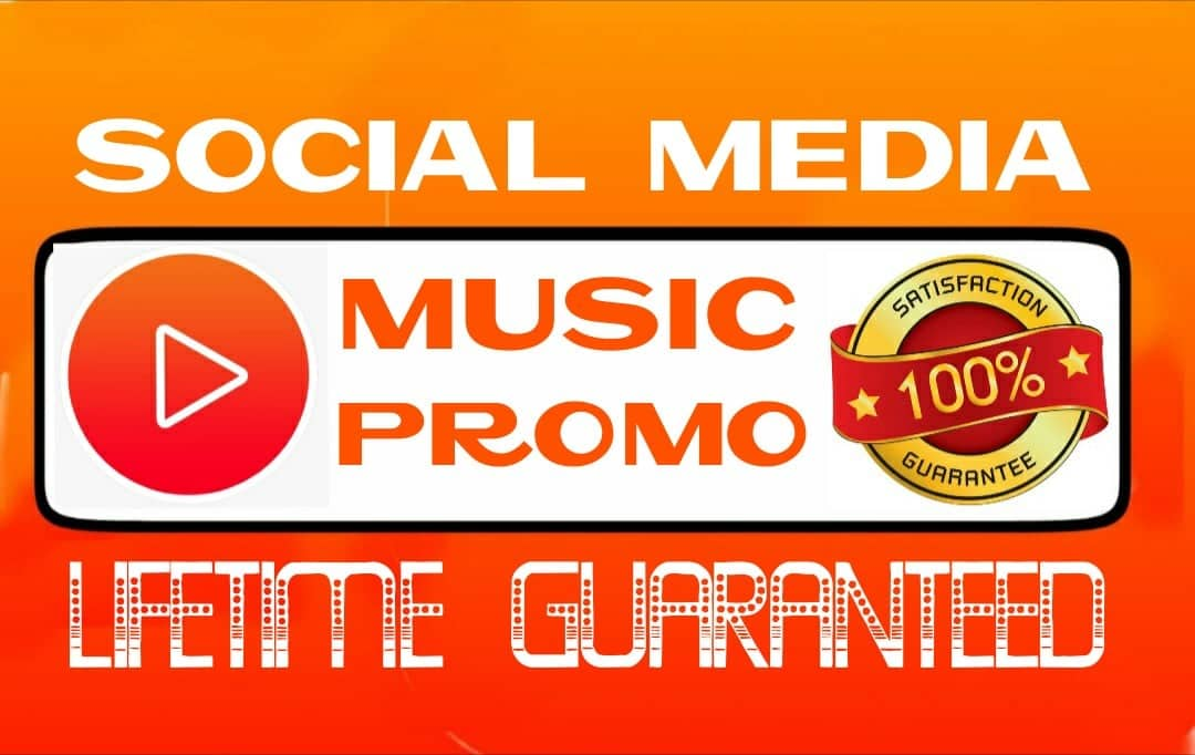 Do social media music promotion professionally
