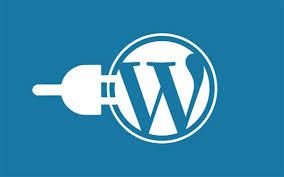 Manage design a professional wordpress website or web design