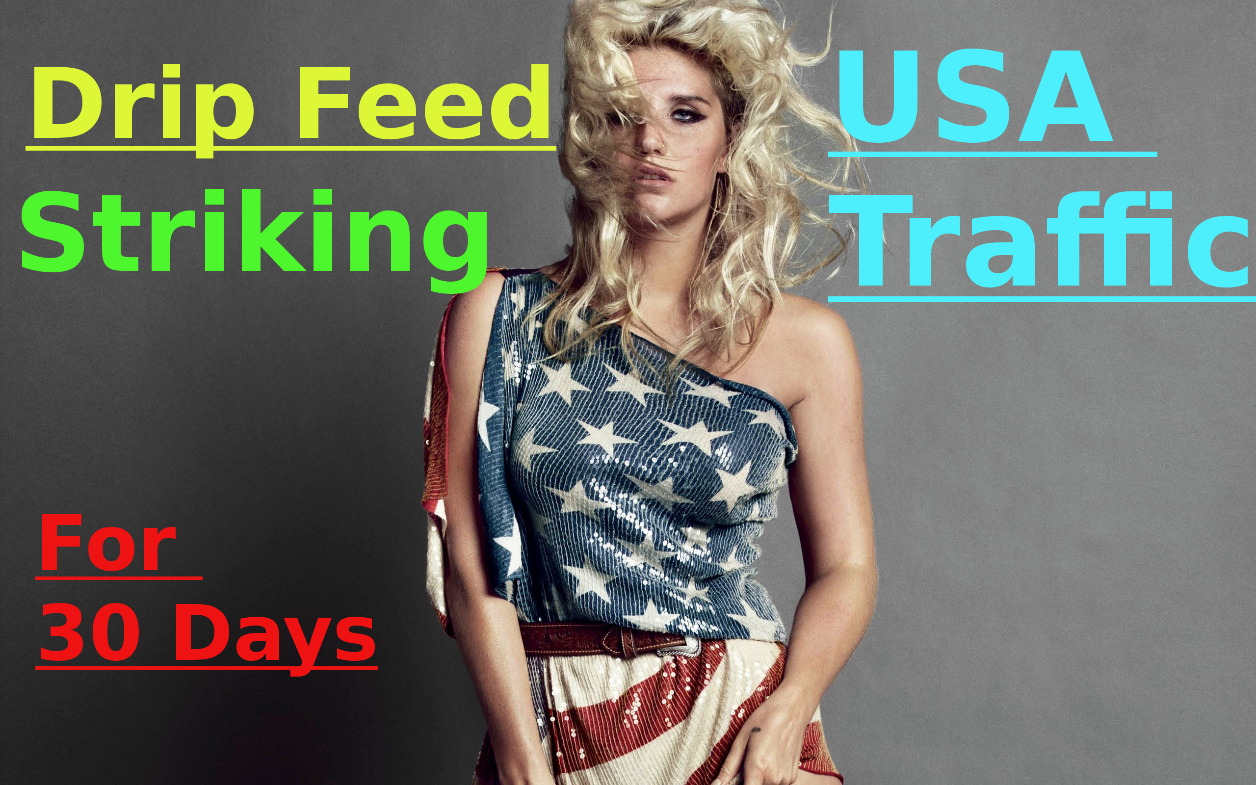 Drip Feed Striking USA Traffic For 30 Days To Your Websites and Blogs.
