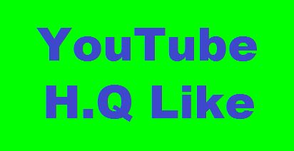 YouTube Video Promotion And Rank Perfectly Via High Quality User
