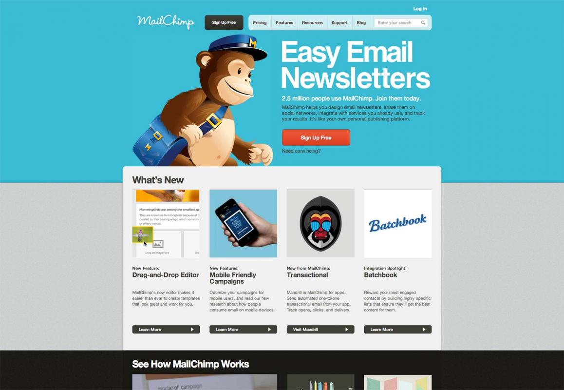 I will setup your mailchimp email template