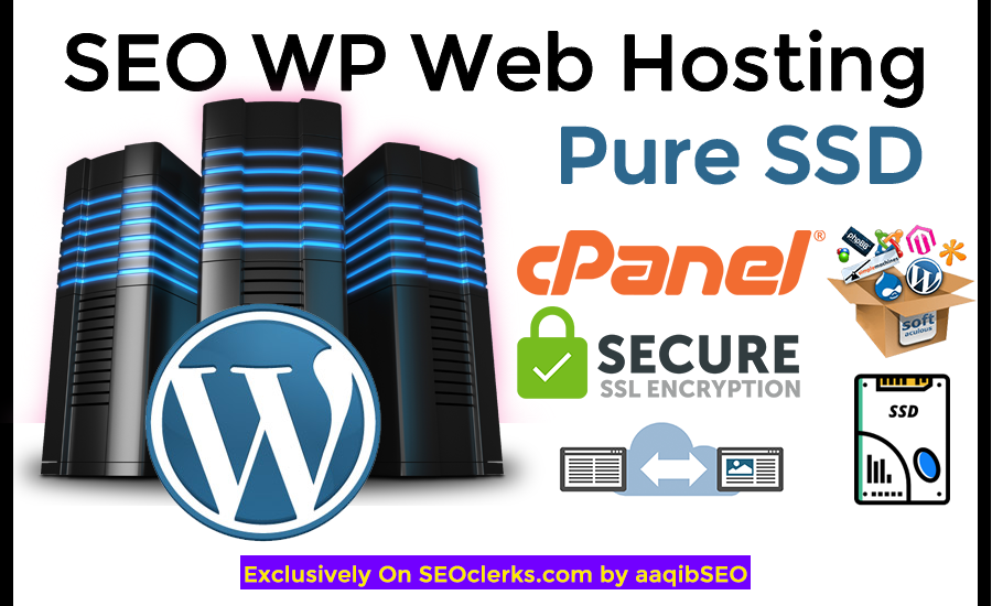 SEO Web Hosting (Pure SSD) for your Website