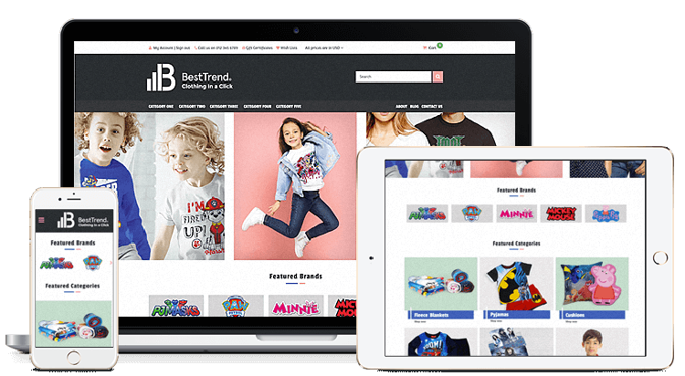create Professional eCommerce websites design for Small to Large eCommerce Businesses
