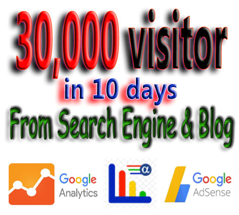 Reseller pack with 3,000+ Visitors per day for your customers Website or Blog From Search Engine