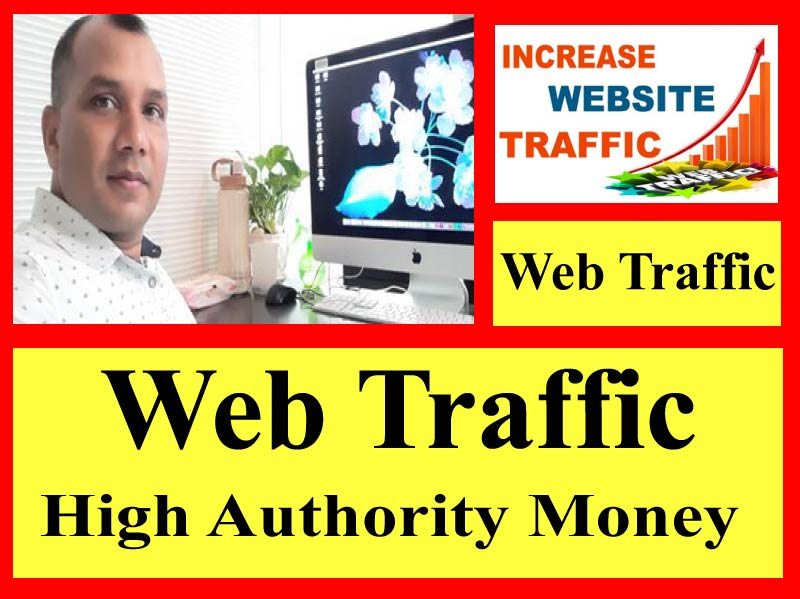 I will bring 100K organic niche web traffic real quality regions targeted visitor
