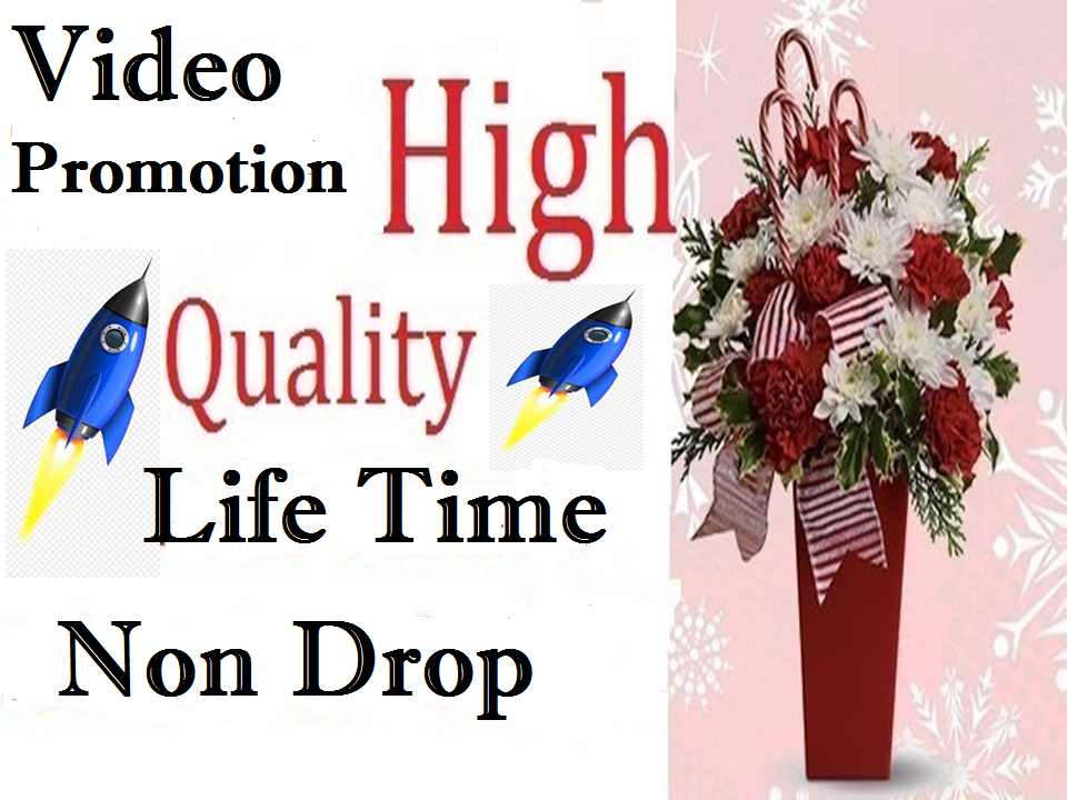 Super Fast Delivery, High quality, Video promotion