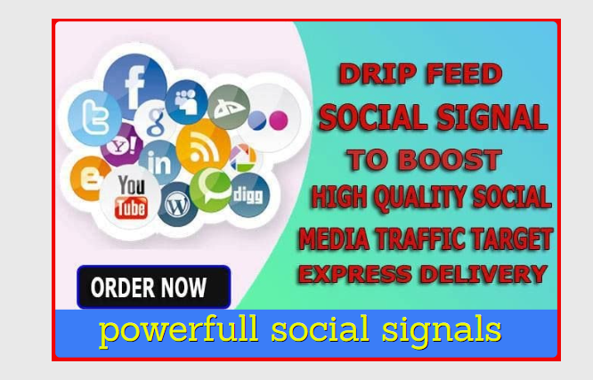 I will Provide Best 1500 Manually High-Quality Social Signals