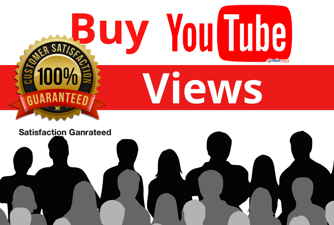 I will provide High Quality Non Drop 1000 video views