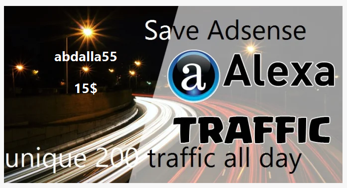 send to you all day 200 traffic to your website