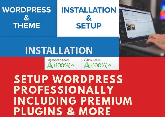 setup wordpress professionally including premium plugins and themes