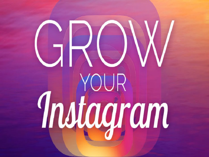 I will grow your instagram account