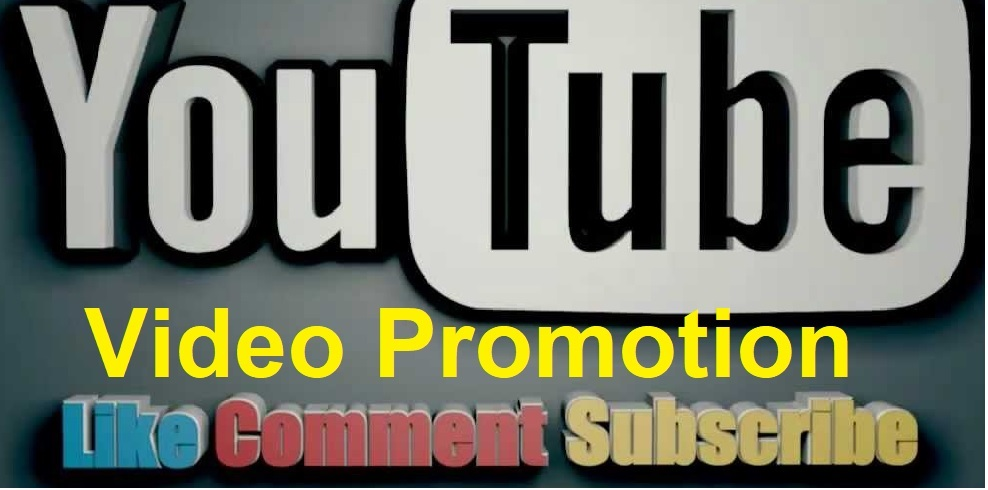 I will create video Promotion and social Media marketing