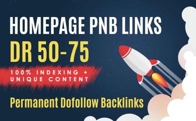 Do Manually 20 Permanent DR50+ Homepage PBN Do follow Backlinks