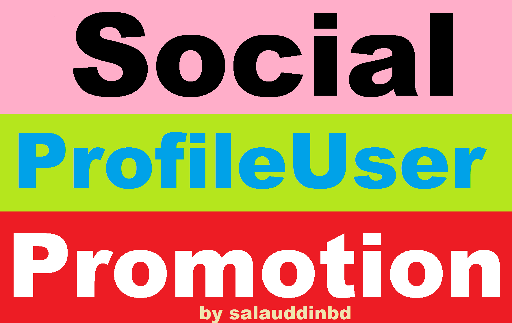 Safe High Quality Social Profile Users Promotion Marketing
