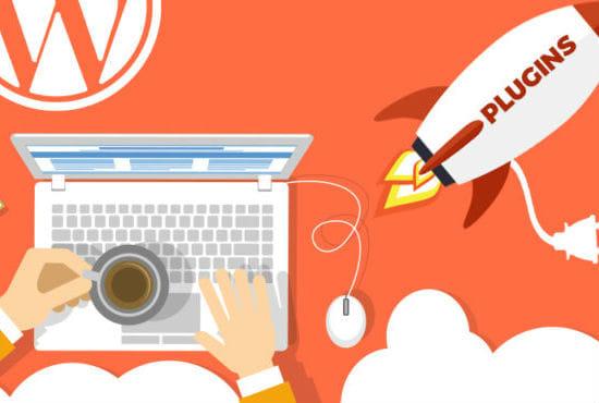 Develop Custom Wordpress Plugin in 24 hours