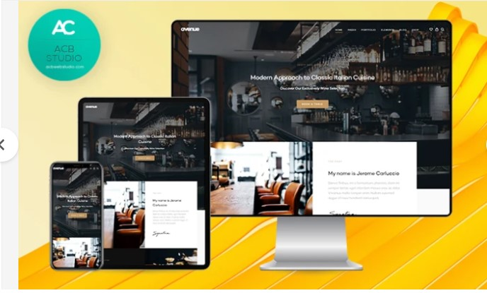 design a modern professional wordpress website design