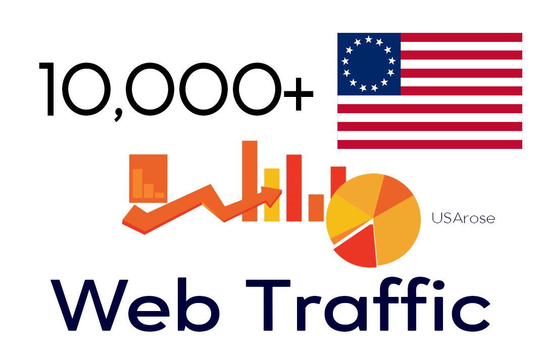 10,000+ Web Traffic For Your Website,  From USA Real Human Traffic