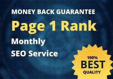 provide monthly SEO service to rank website on top of google