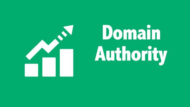 NEW SEO and Link Building - Make Your Website Become An Authority Site