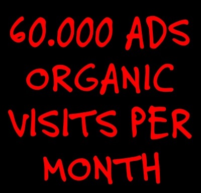 60.000 ORGANIC VISITS with your preferred keywords for ONE MONTH