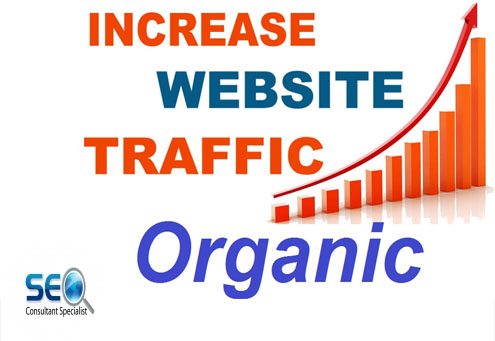 Deliver real web traffic to website with proof,  quality visitors