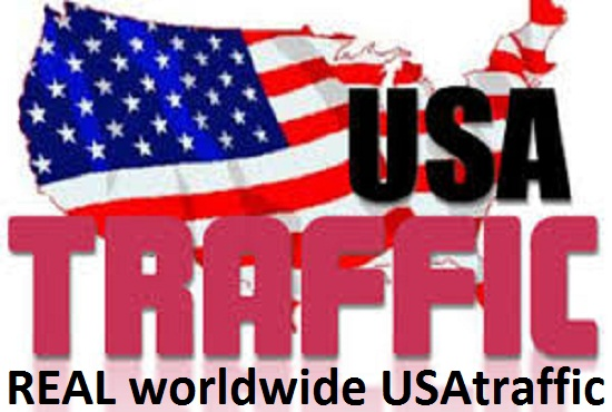 DO Professionally and grow manage real 2500+ worldwide USA Website Traffic