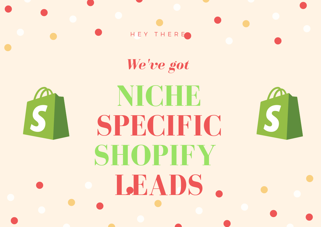 300k+ Massive Store all niches leads USA