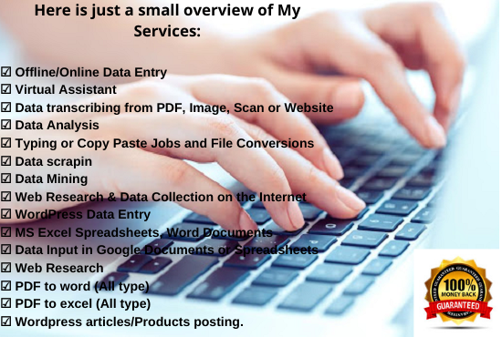 I will do Fast and Accurate Online, Offline Data Entry Jobs