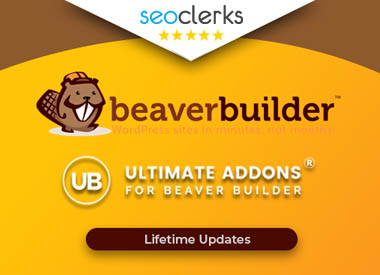Install Beaver Builder Pro and Ultimate addons for Beaver on your Wordpress Lifetime Updates