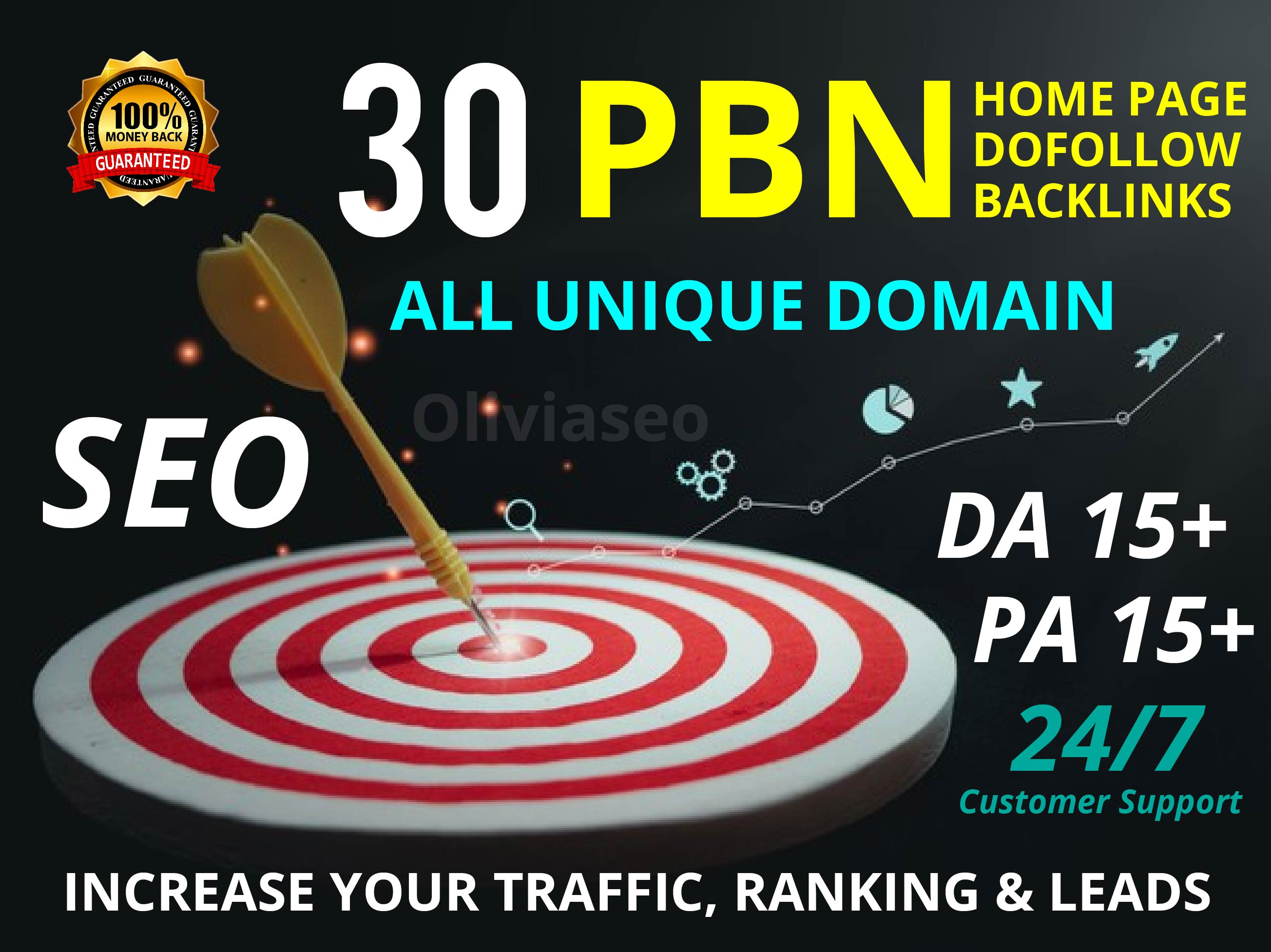 Create 30 High PA/DA TF/CF Homepage PBN Backlinks To Skyrocket you SERP