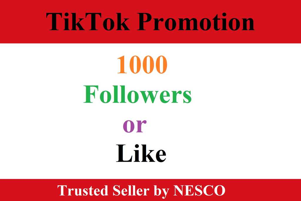 TikTok Promotion to your profile
