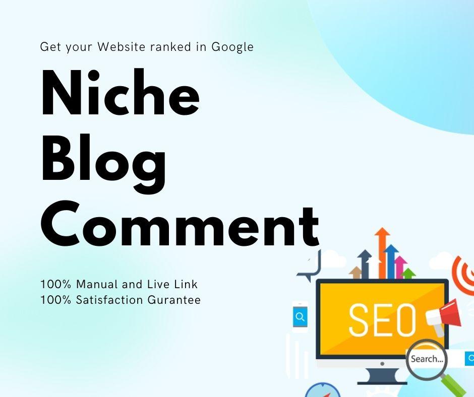 DO 120 Manual Niche Relevant Blog Comments